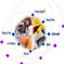 MESRST: Ministère de l'Enseignement Supérieur, de la Recherche Scientifique et de la Technologie
